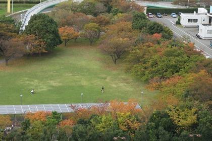 写真:中公園の紅葉