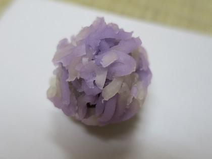 写真/紫陽花きんとん