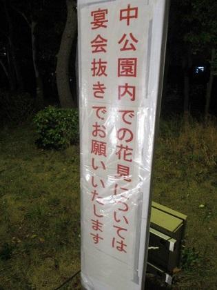 写真/夜桜ライトアップ2
